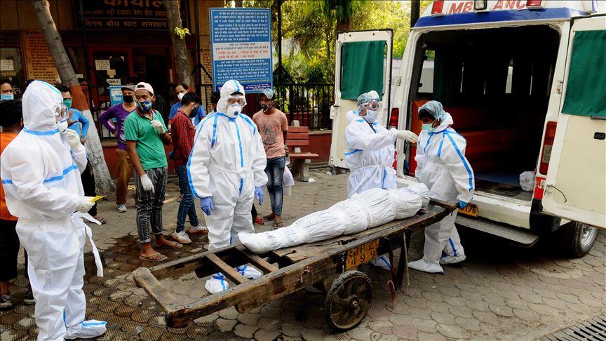 ਪੰਜਾਬ 'ਚ ਅੱਜ ਕੋਰੋਨਾ ਨਾਲ 12 ਮੌਤਾਂ, 242 ਨਵੇਂ ਕੇਸ ਆਏ ਸਾਹਮਣੇ